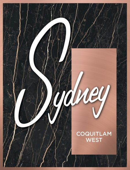 545 Sydney Avenue Coquitlam West by Ledingham McAllister